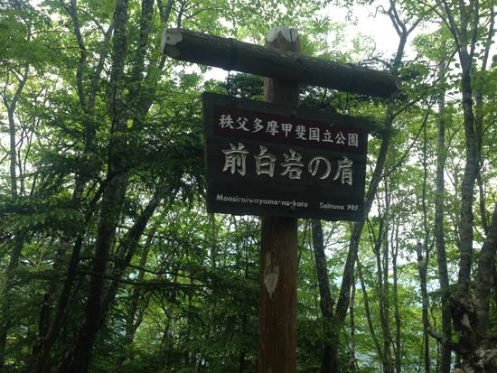 17061108雲取山