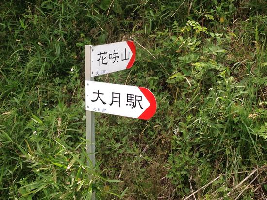 17060615花咲山