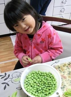 エンドウ豆4