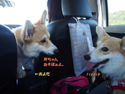 はぁはぁの車内
