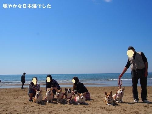 日本海バック2
