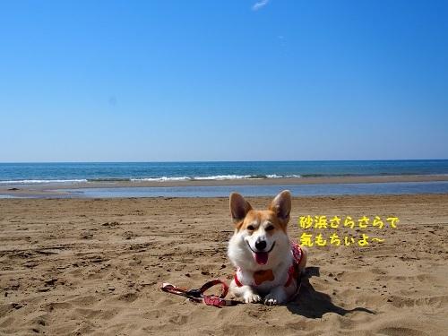 砂浜さらさら