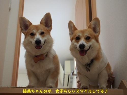 陽菜ちゃん女子スマイル