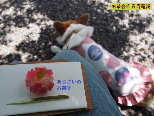 紫陽花のお菓子