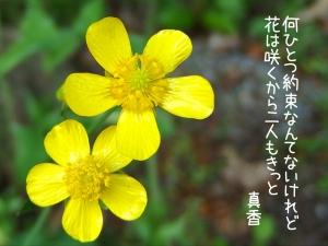 IMG_6941.jpg
