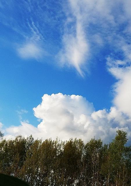 s-17日の空