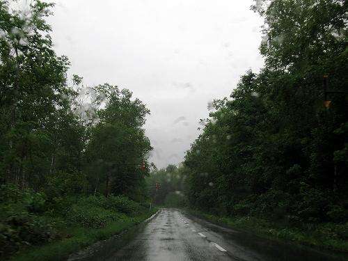 s-強い雨。。。