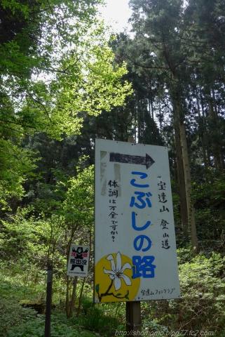 170502HOUDATSU_01.jpg