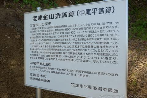 170502HOUDATSU_13.jpg