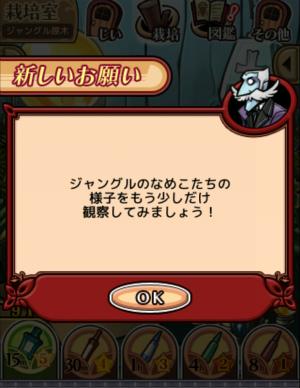 2017ジャングルの原木_065