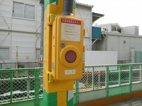 DSCN9061.jpg