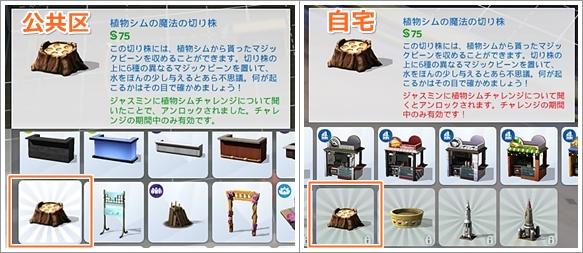 CLG4_20-2.jpg
