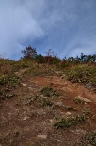 深入山登山道