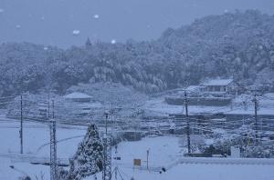 2017年1月15日朝の風景