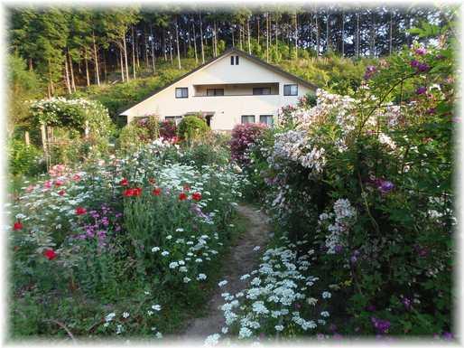 20170704 オルレアの庭