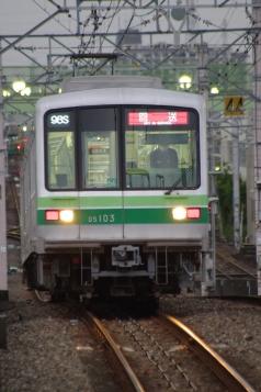 IMGP1368.jpg