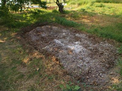 5.5栗の木の下土づくり