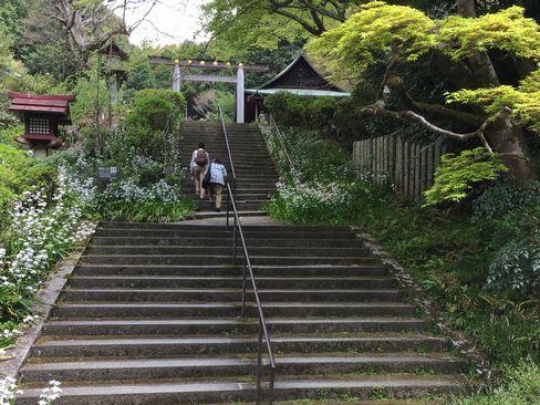 日向大神宮への石段_H29.04.25撮影