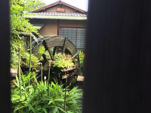 上京区・水車_H29.06.26撮影