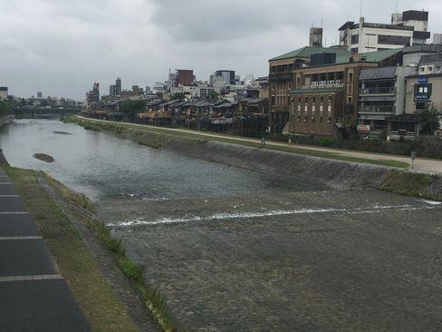 鴨川_H29.06.28撮影