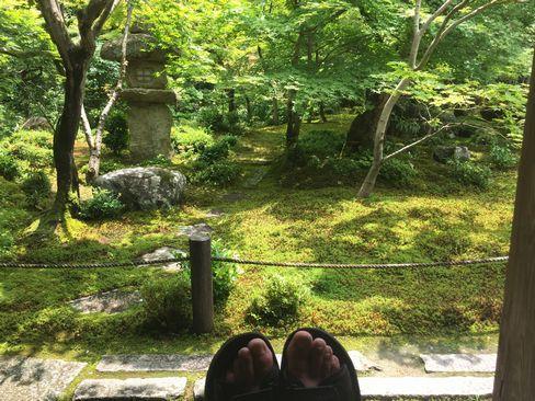 圓光寺・庭園_H29.06.28撮影