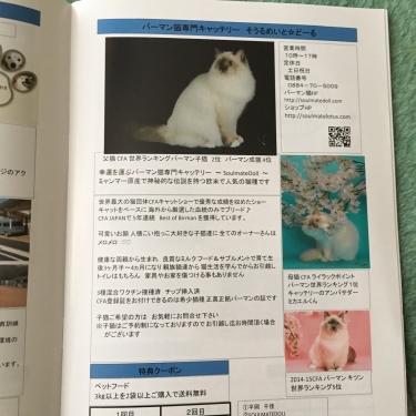 徳島県愛護法