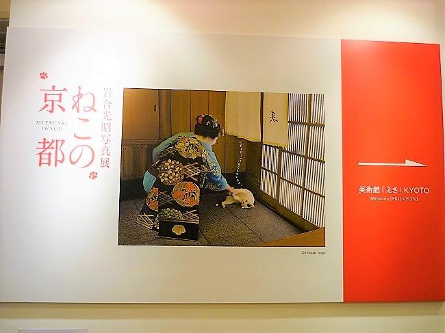 ねこの京都展その2