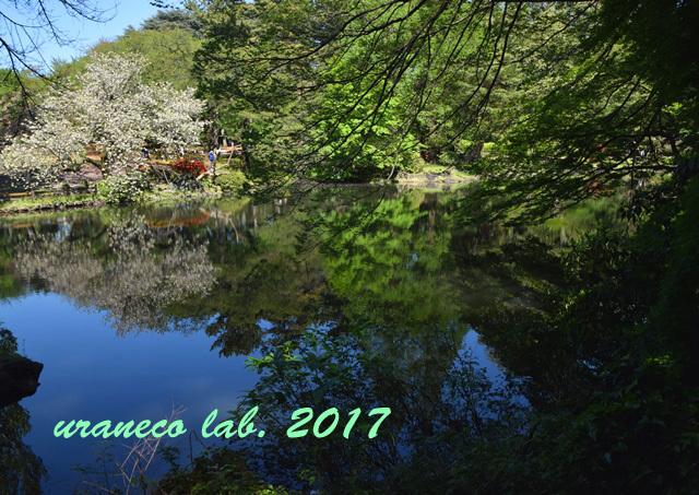 5月1日水鏡5