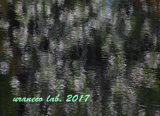 5月1日水鏡4