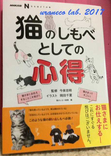 6月26日猫のしもべとしての心得
