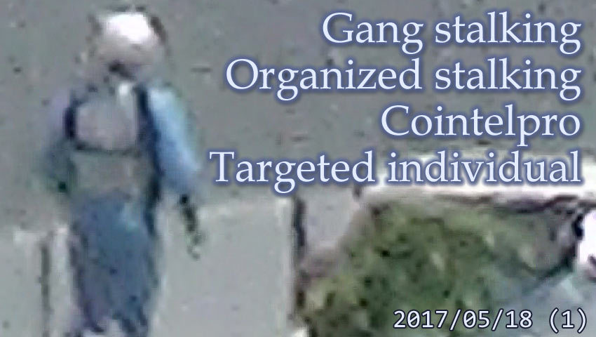 集団ストーキング被害者の記録 2017.5.18 (1) Gang-stalking Organized-stalking Cointelpro Targeted Individuals