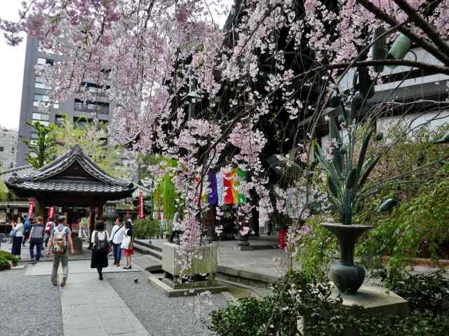 京巡り14