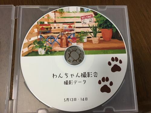 DPP_44_20170613235455347.jpg
