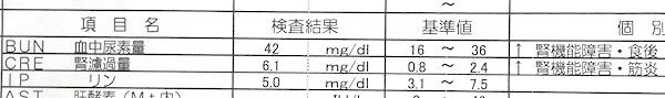 RIMG0027_201706160430291f9.jpg
