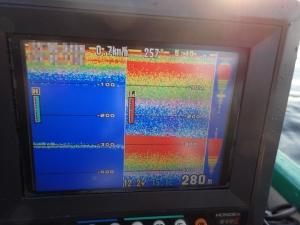 P5030017 深海はわけわかめ