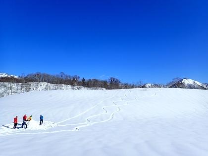20170226野伏ヶ岳07