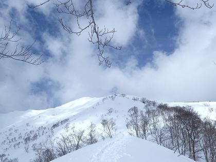 20170226野伏ヶ岳09