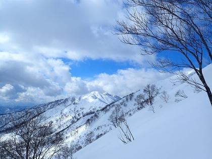 20170226野伏ヶ岳10