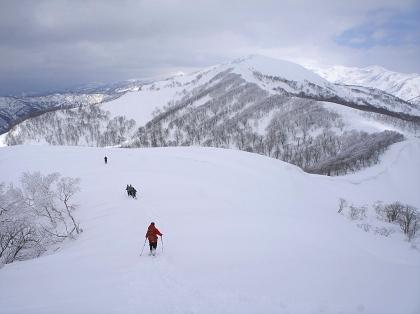 20170226野伏ヶ岳17