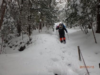 20170115入道が岳09_420