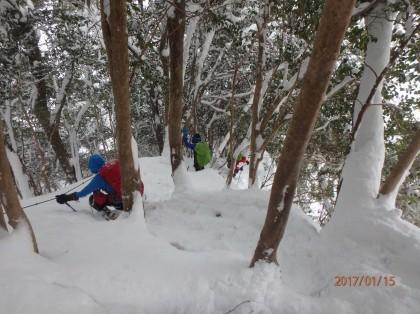 20170115入道が岳15_420