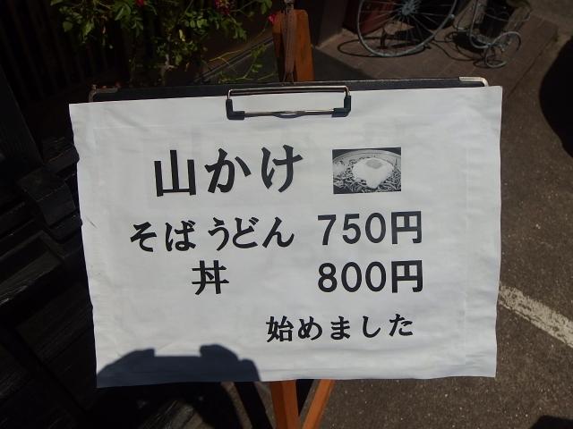 P5276845.jpg