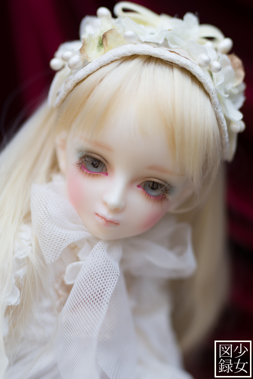 DSC_8895.png
