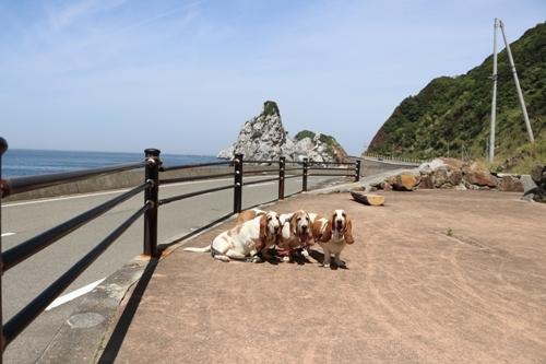 白崎海洋公園0021