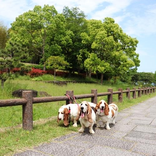 山田池公園0007