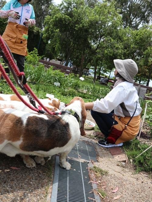 山田池公園0023