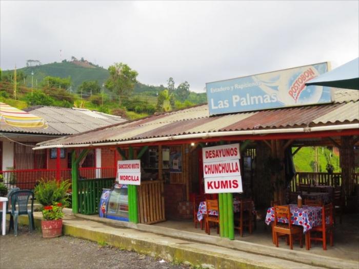 ボゴタからコーヒー農園へ (25)