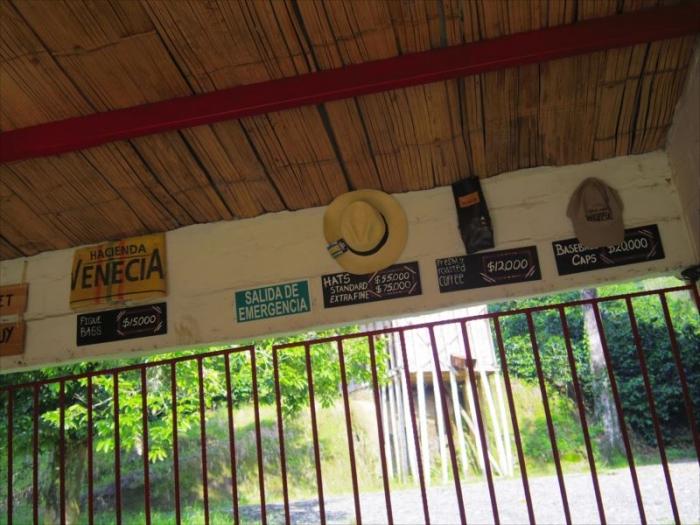 コーヒー農園のホステル (12)