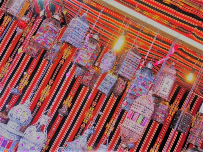 メキシコシティの博覧会 (26)