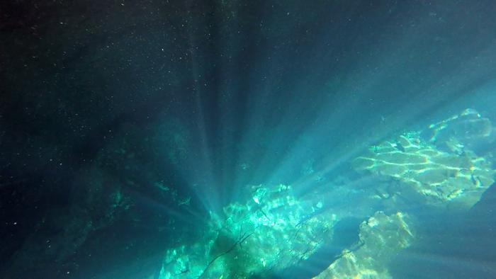 セノーテでダイビング1